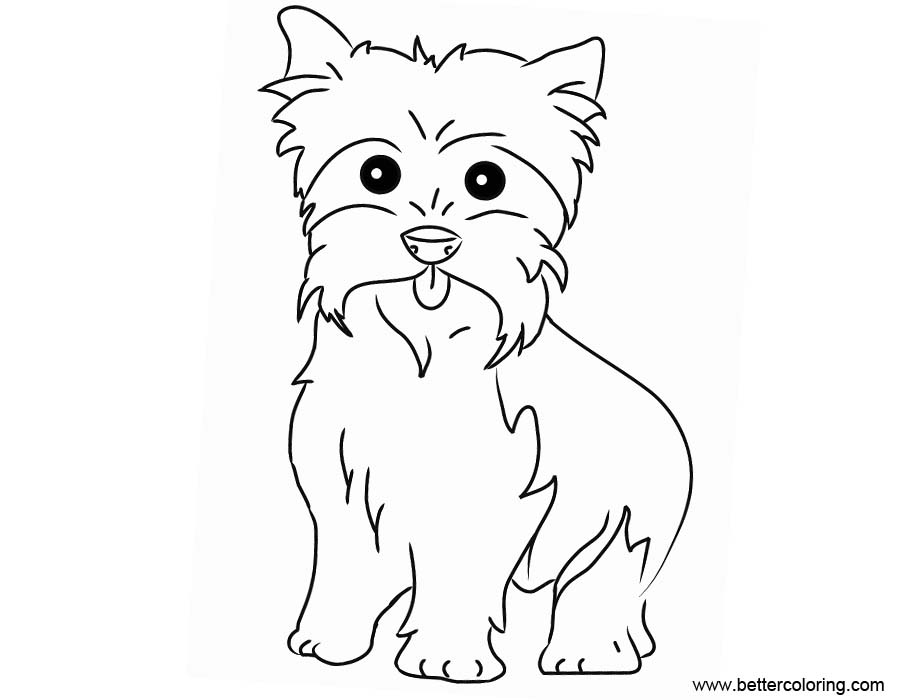 yorkie coloring sheet yorkie line drawing at getdrawings free download sheet coloring yorkie