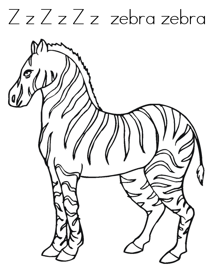 zebra coloring pages free zebra coloring pages coloring zebra pages