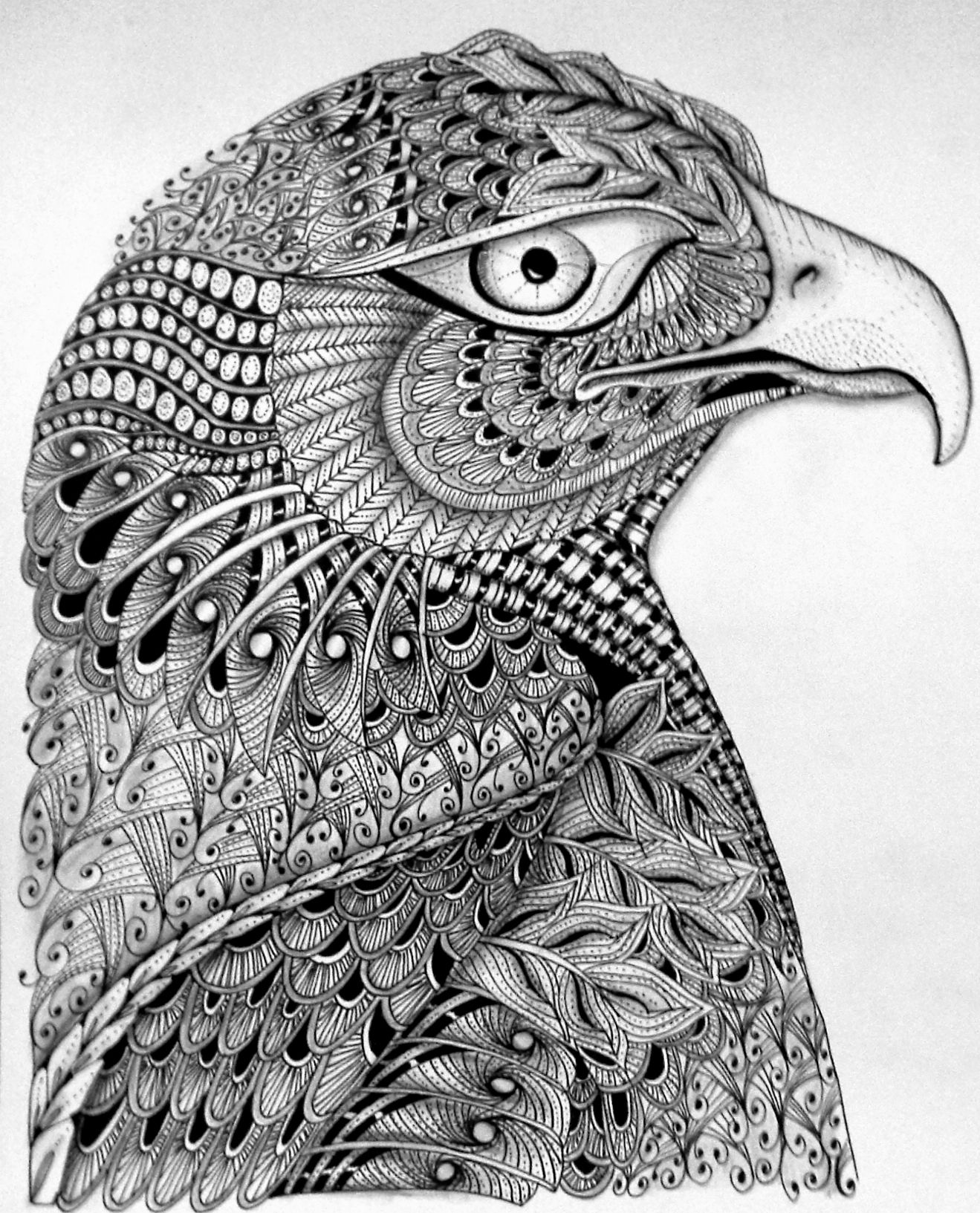 zendoodle printables zia eagle tangle your head off zentangle doodle art zendoodle printables