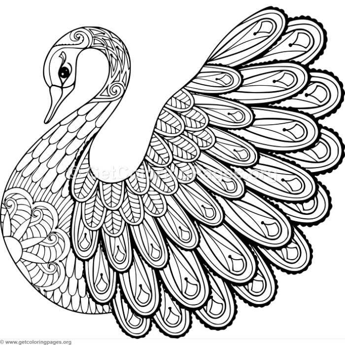 zentangle coloring pages free printable free printable zentangle coloring pages for adults zentangle pages free printable coloring