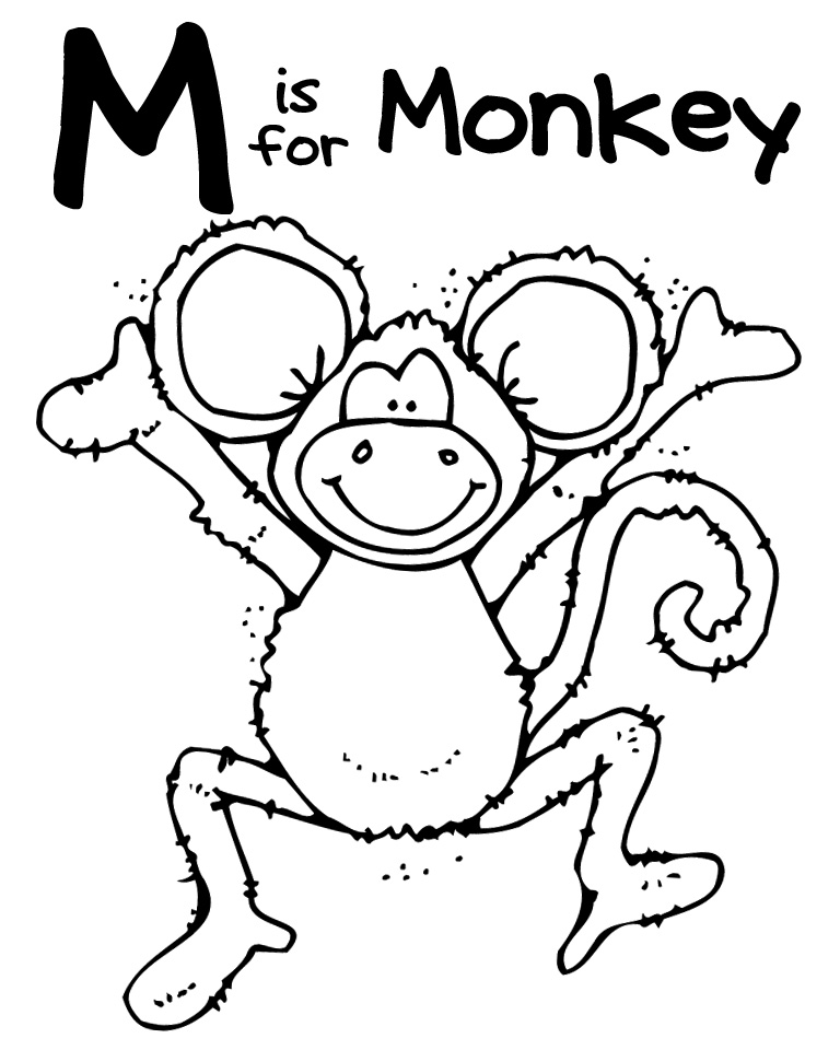zoo animal coloring pages for preschool awesome baby jungle free animal coloring page animal for coloring preschool animal zoo pages
