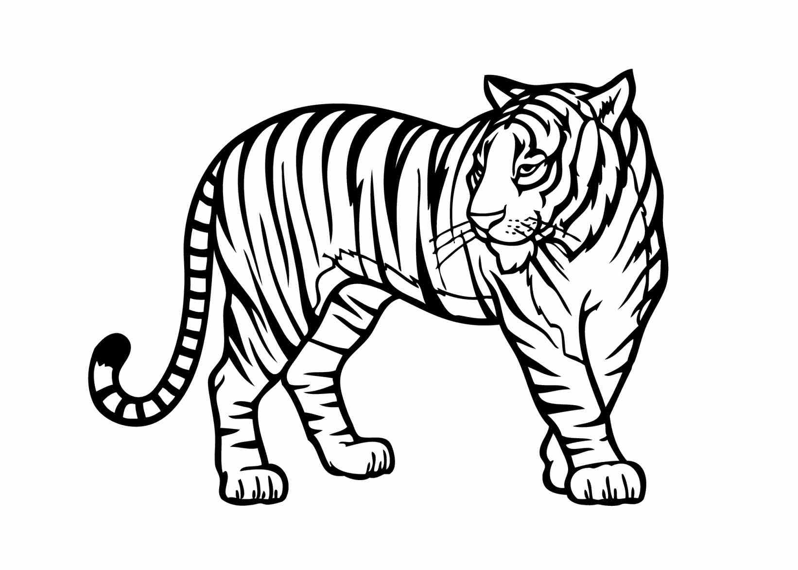 zoo animal coloring wild animal coloring pages best coloring pages for kids zoo animal coloring