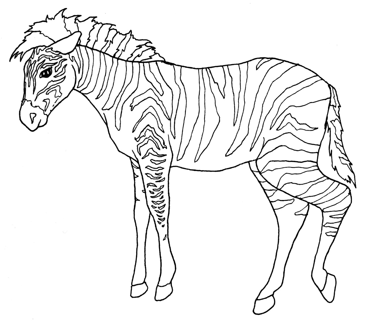 zoo animal coloring zoo animal coloring pages free download on clipartmag animal zoo coloring