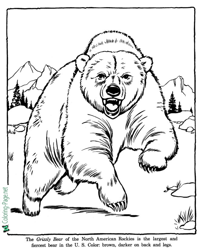 zoo animal coloring zoo animal coloring zoo animal coloring