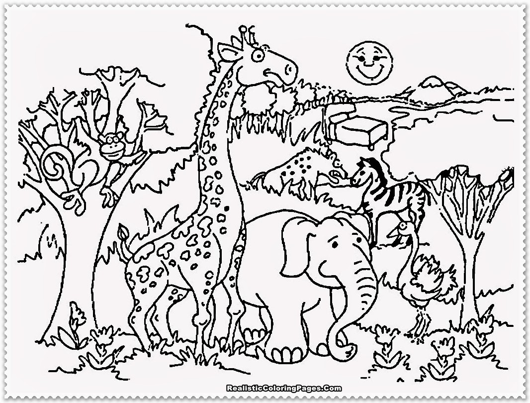 zoo animals coloring pictures cute cartoon animal set zoo coloring and drawing page animals pictures zoo coloring