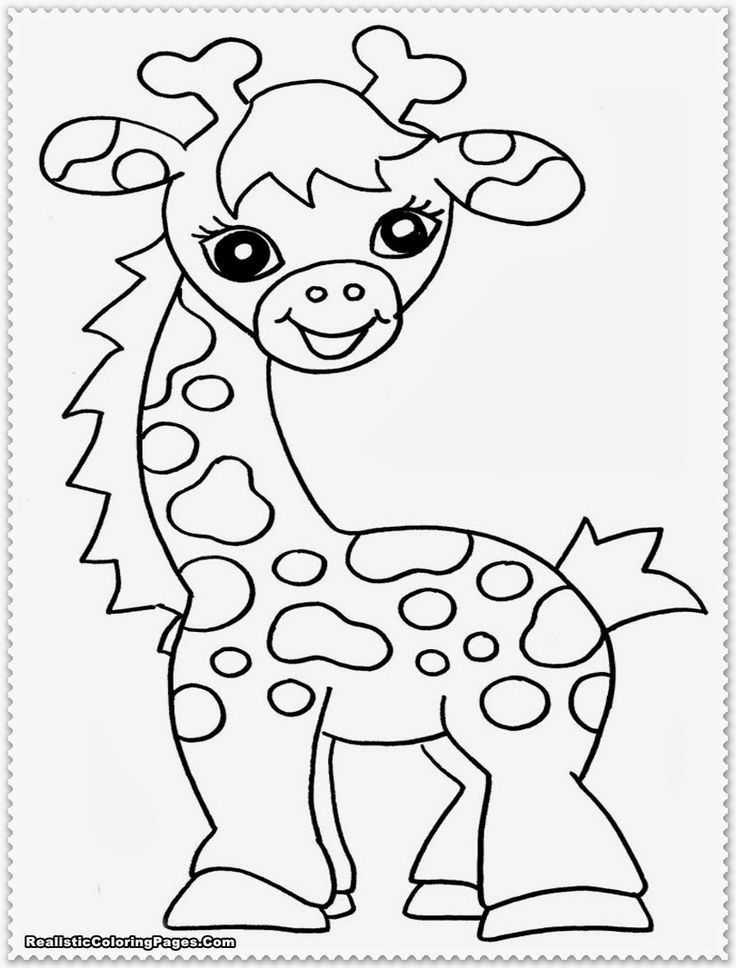 zoo animals coloring pictures get this zoo coloring pages free to print 56347 zoo animals pictures coloring