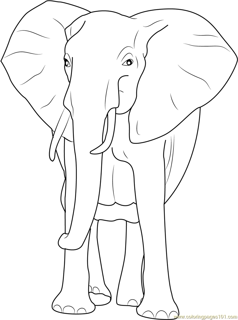 african elephant coloring pages african elephant coloring page animals town animals elephant pages african coloring