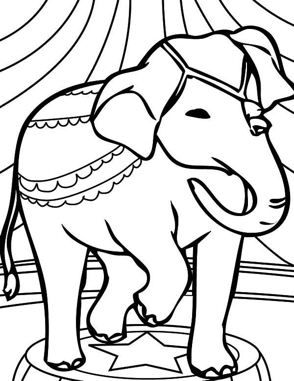 african elephant coloring pages sketch of african elephant coloring pages coloring sky african pages coloring elephant