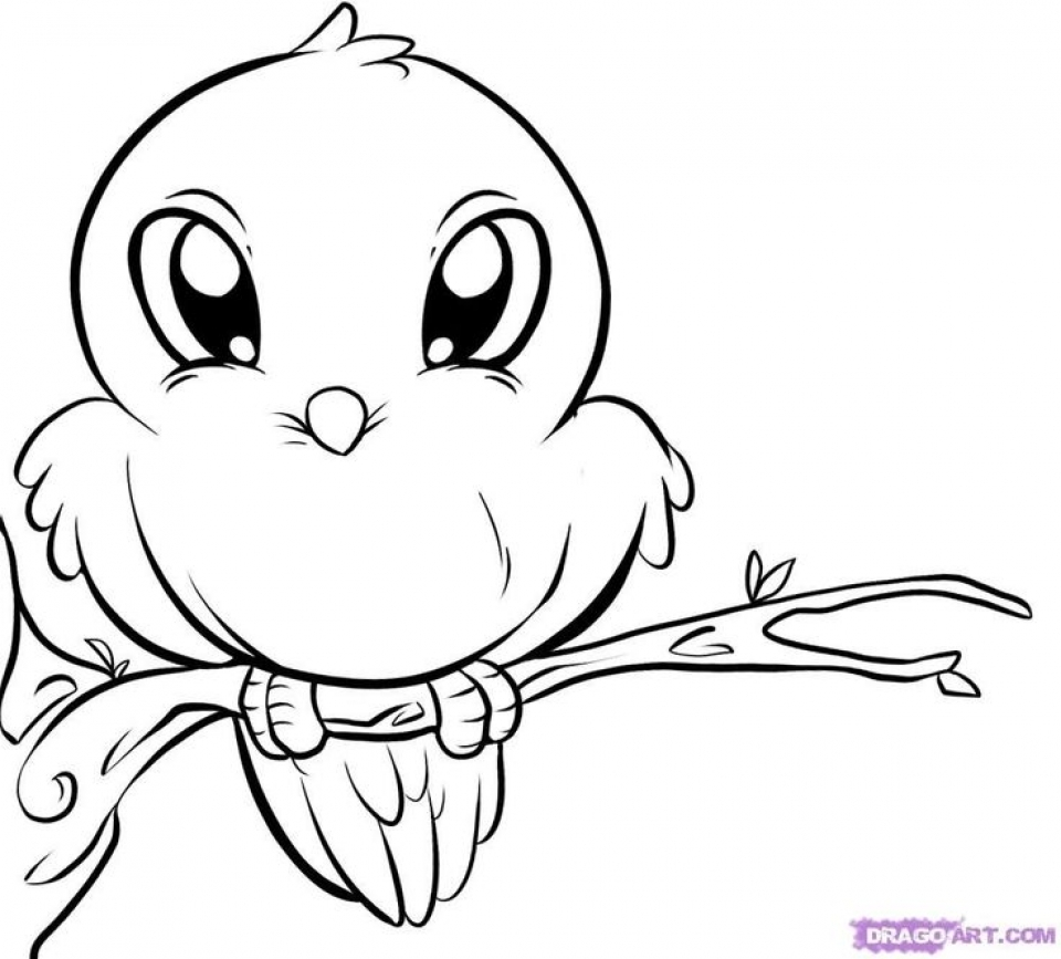 animals drawings to color cartoon animal coloring sheets for baby coloring pages to color drawings animals