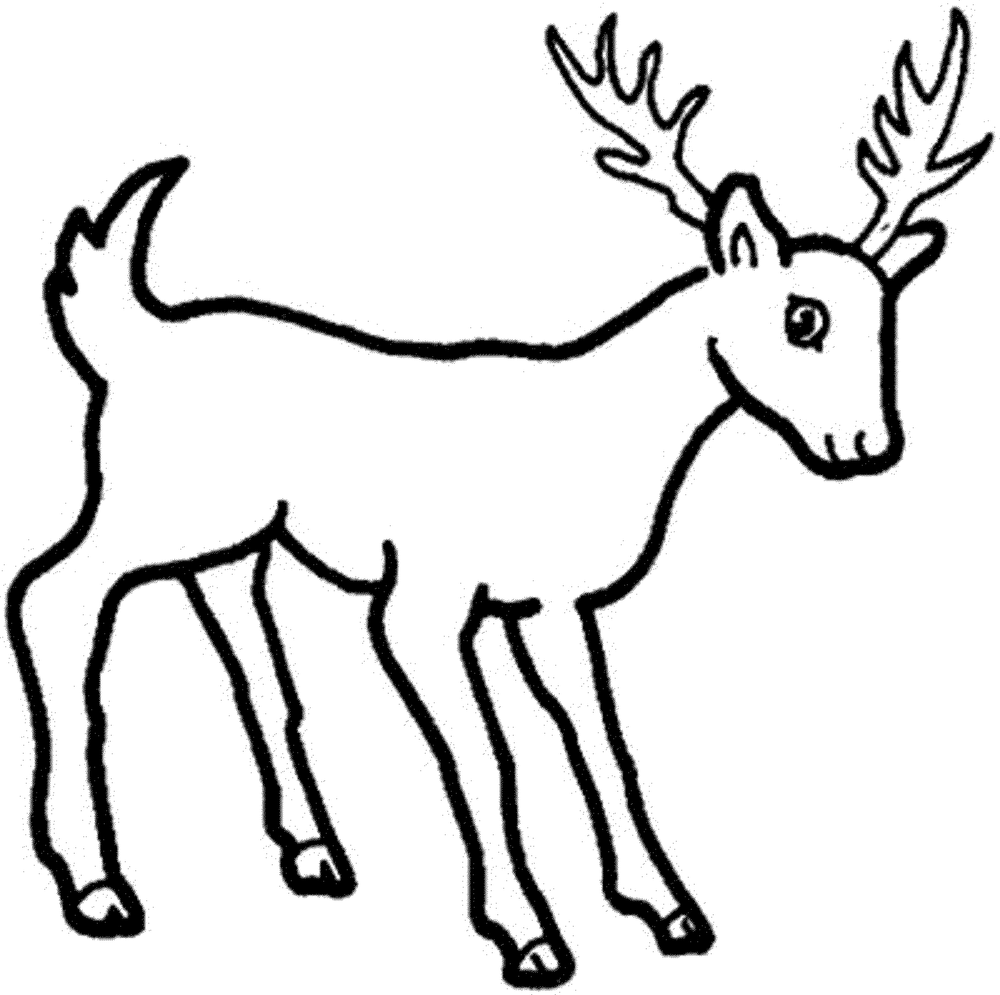 animals drawings to color deer animals page 2 printable coloring pages to color animals drawings