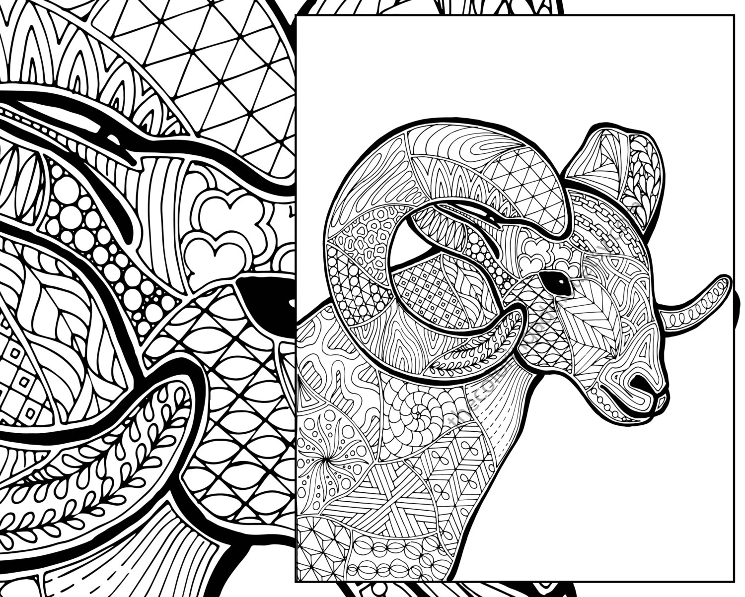 animals drawings to color ram animal drawing at getdrawings free download to color animals drawings