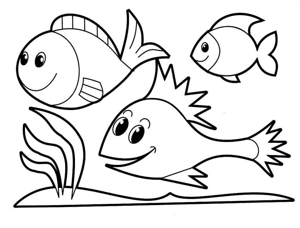 animals drawings to color school of fish drawing clipart panda free clipart images to color animals drawings