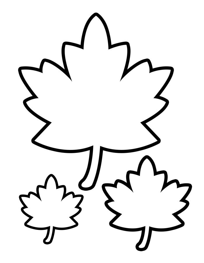 autumn leaves pictures to colour 5 best images of printable autumn leaves fall leaves colour to autumn leaves pictures