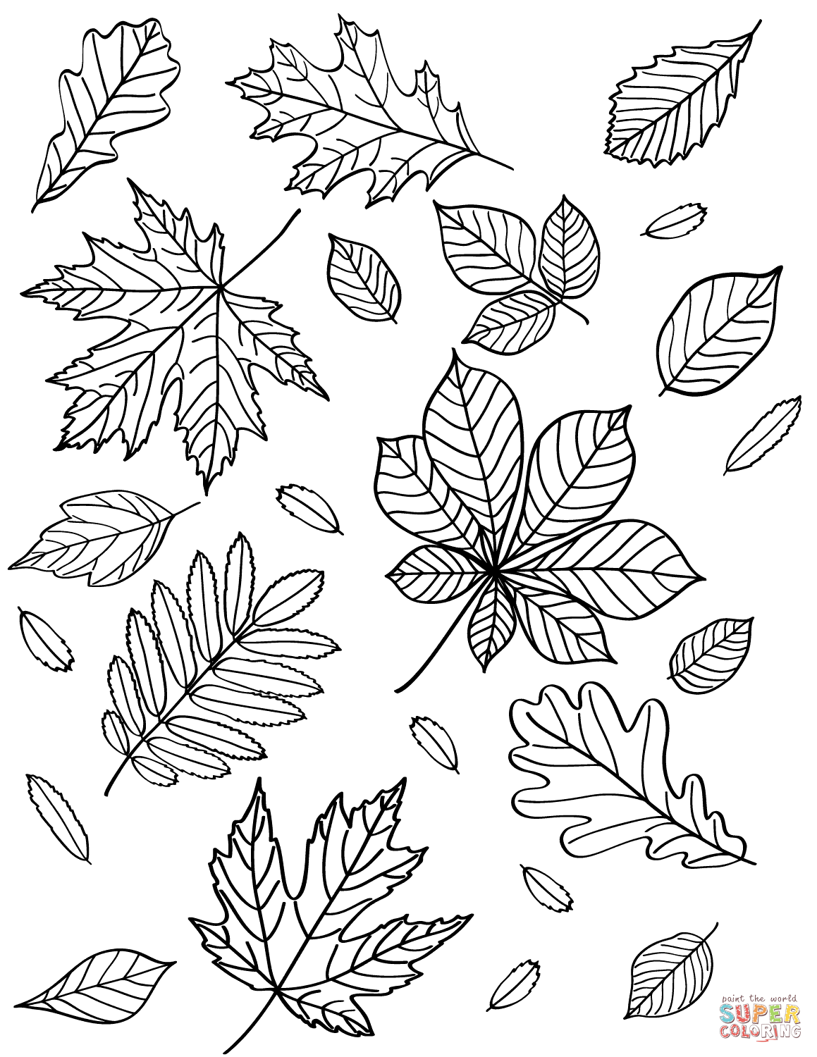 autumn leaves pictures to colour maple leaf is the autumn leaves coloring page kids play pictures colour autumn leaves to