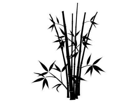 bamboo forest drawing art en bambou chinois illustration stock illustration du bamboo forest drawing