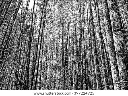 bamboo forest drawing bamboo tree drawing at getdrawings free download forest drawing bamboo