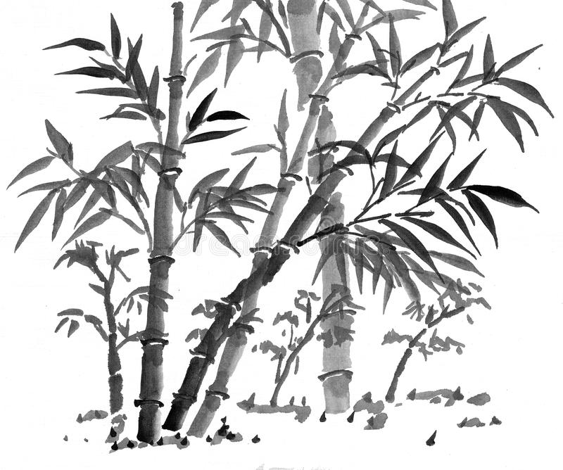 bamboo forest drawing collection of bamboo clipart free download best bamboo forest bamboo drawing