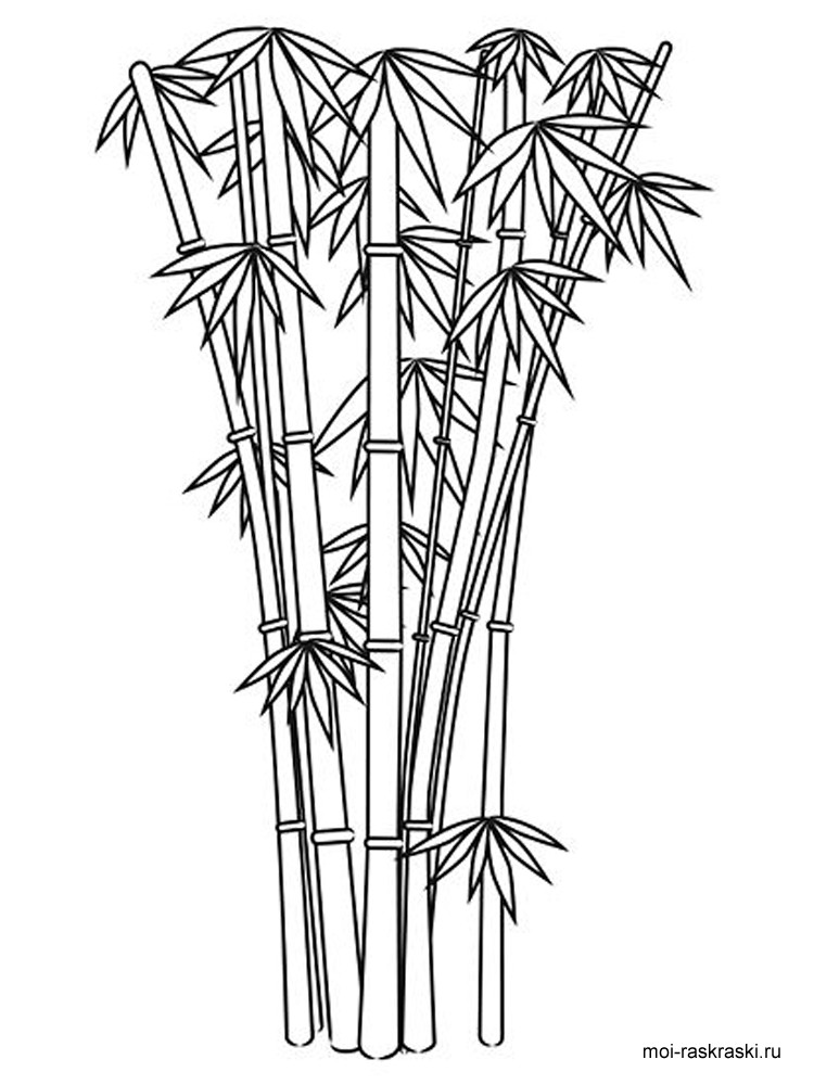 bamboo forest drawing drawing wall bamboo painting of bamboo tree on wall bamboo drawing forest