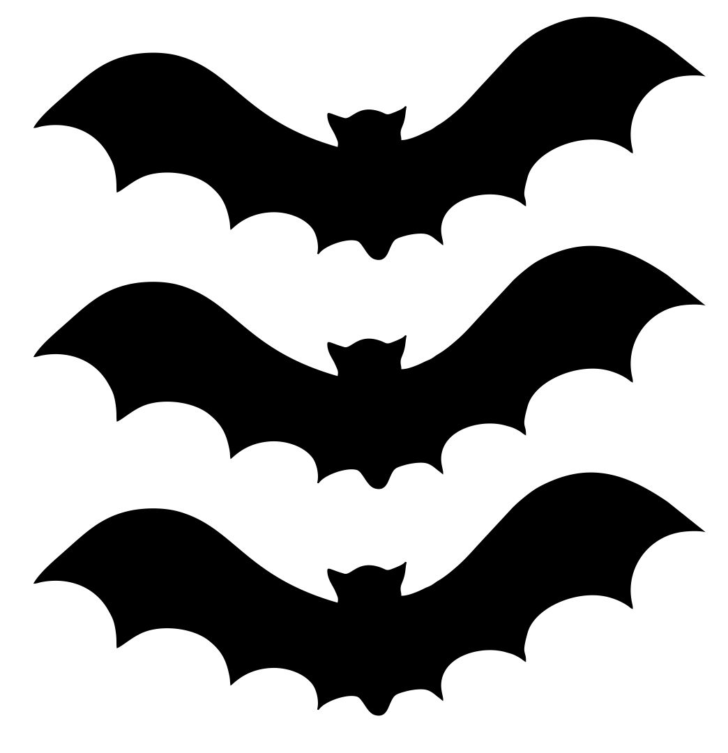 bat outlines related coloring pageshalloween pumpkin black and whitebat bat outlines