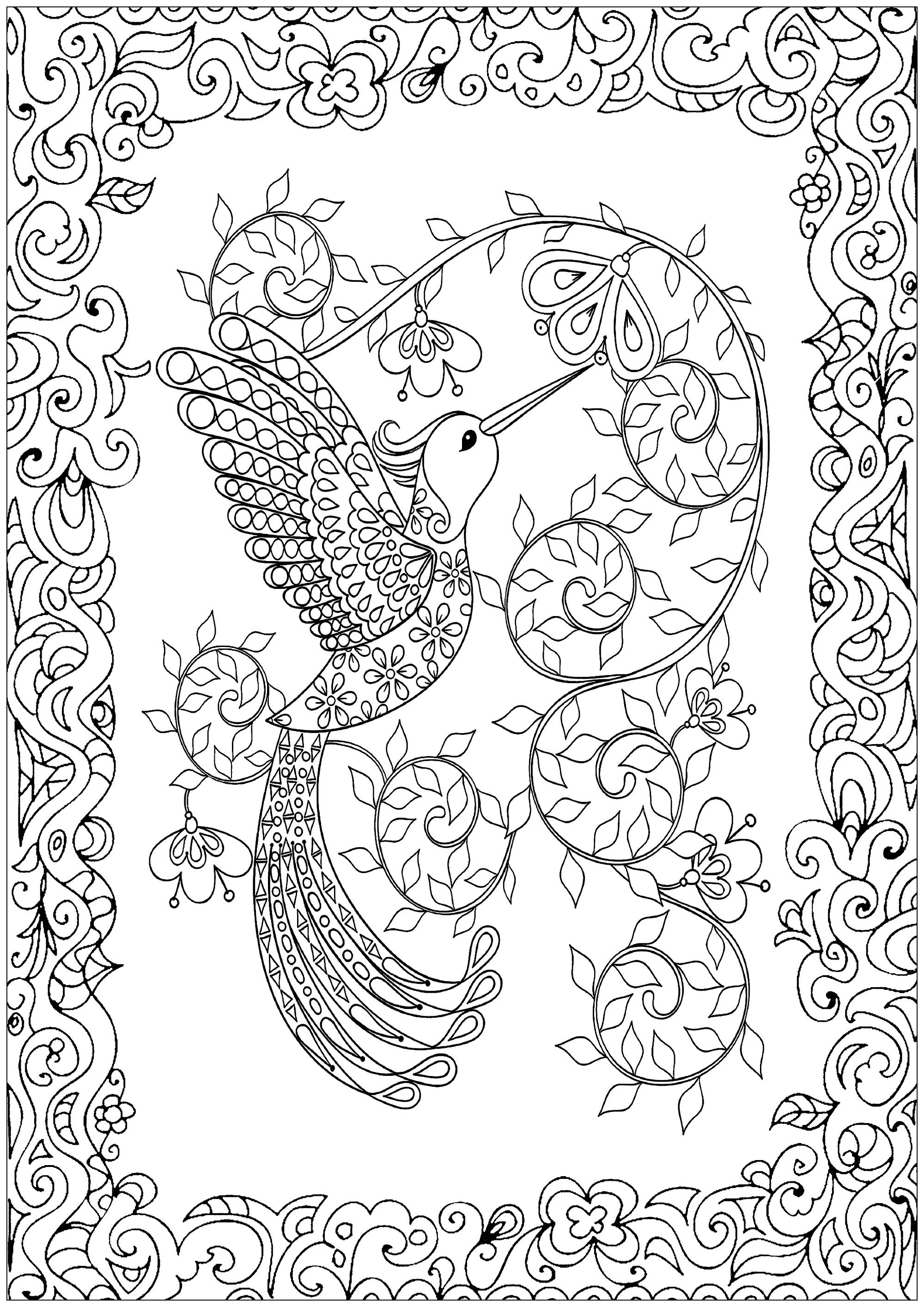 beautiful bird coloring pages colours drawing wallpaper beautiful bird parrot coloring beautiful pages coloring bird