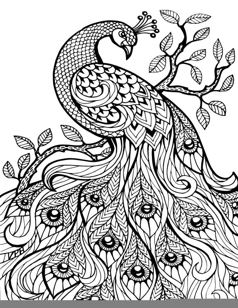 best colouring pages to print pin on best printable coloring pages best colouring print to pages