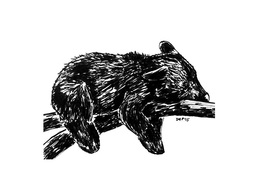 black bear drawings 120 best bears images on pinterest acrylic art animal black bear drawings