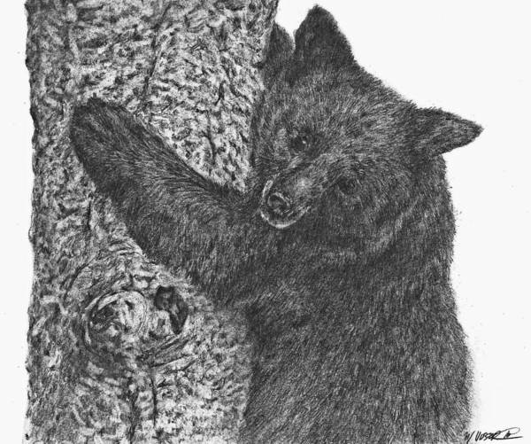black bear drawings sketch of bear in black premium vector bear black drawings
