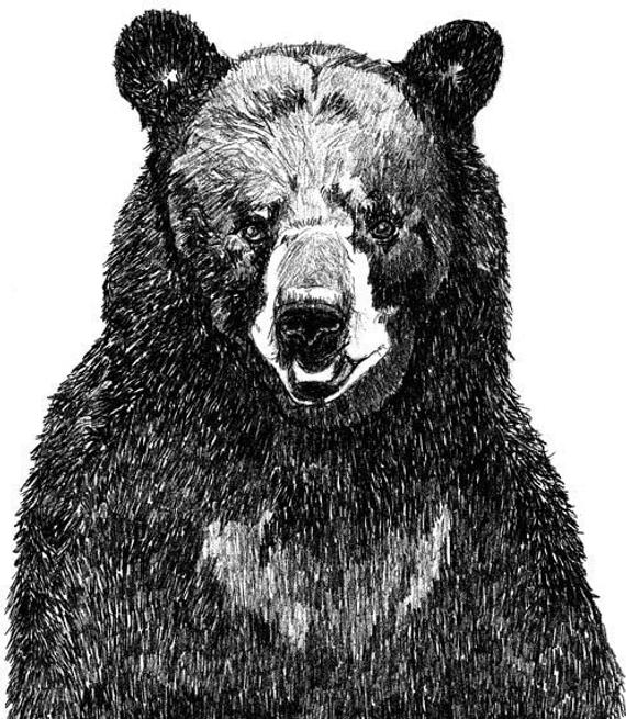 black bear drawings the barebow chronicles with malice aforethought outdoorhub drawings bear black