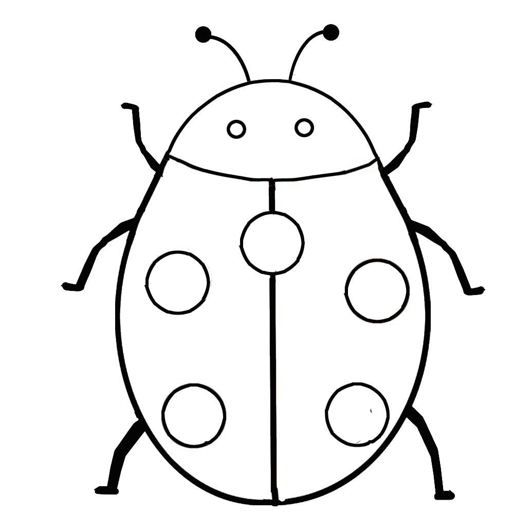 bug pictures to color free printable bug coloring pages for kids bug color to pictures