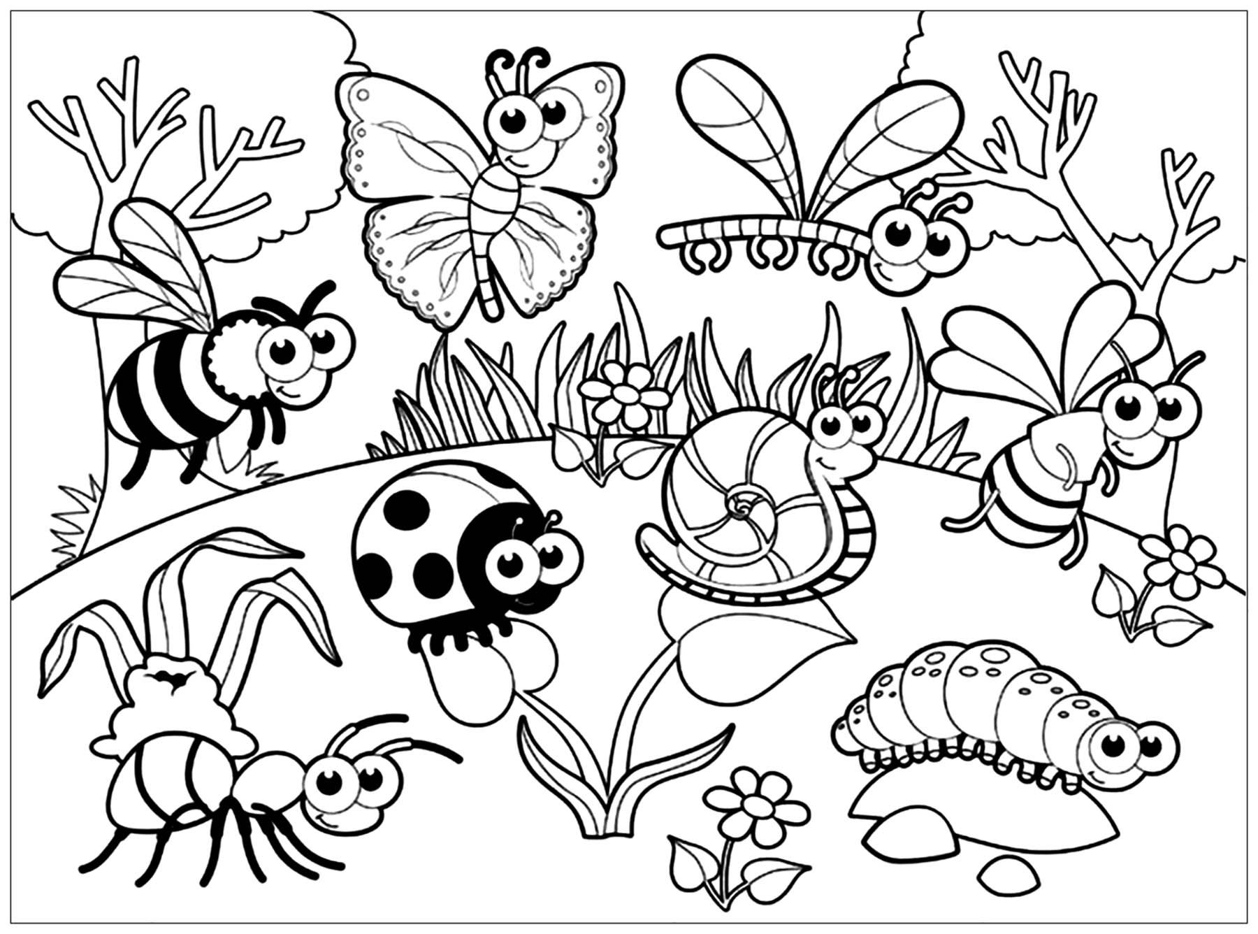 bug pictures to color free printable bug coloring pages for kids pictures color bug to