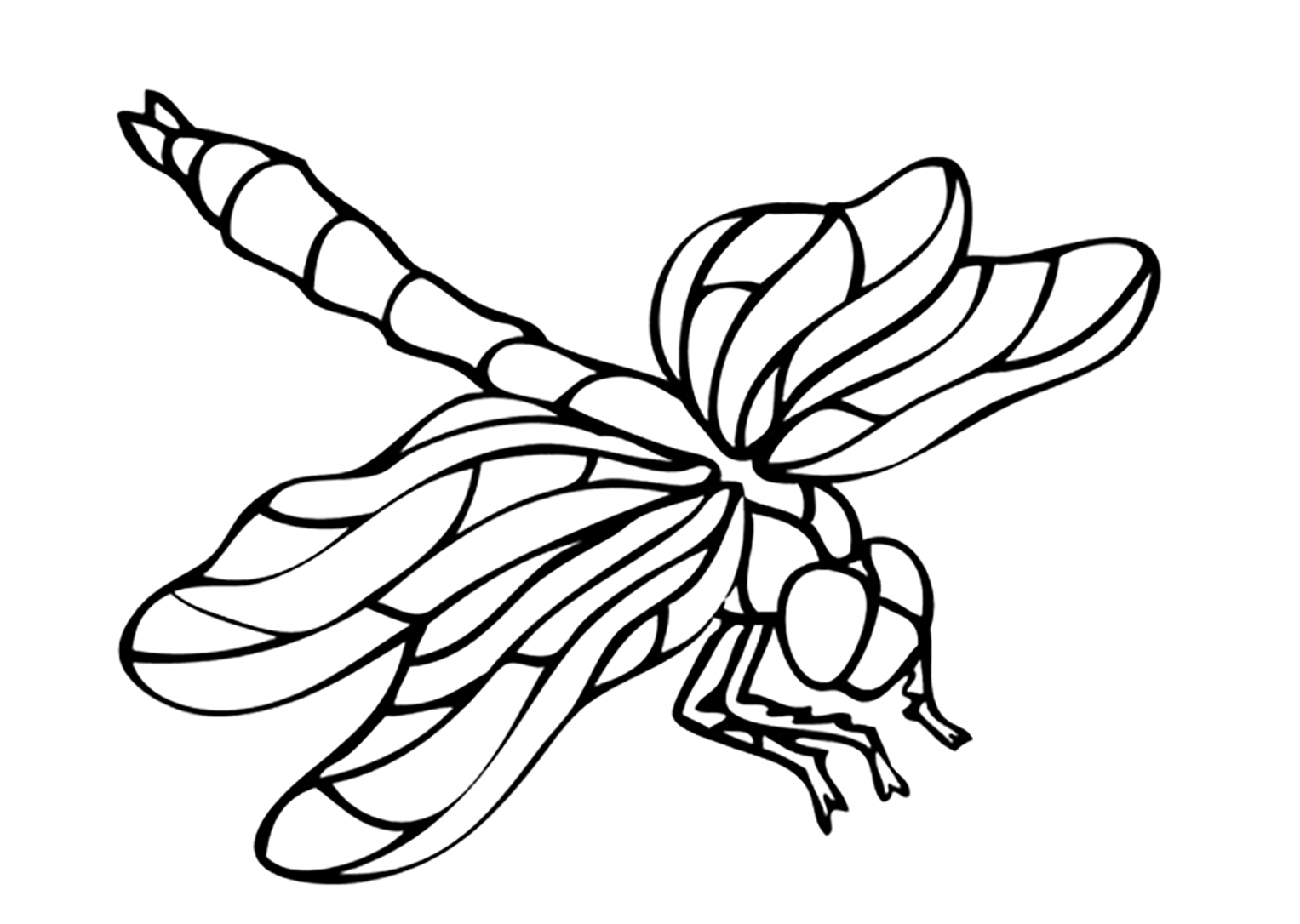 bug pictures to color oodles of doodles ladybug coloring pages to pictures bug color