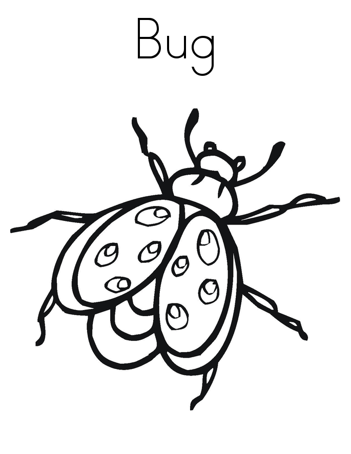 bug pictures to color printable bug coloring pages for kids cool2bkids color to bug pictures