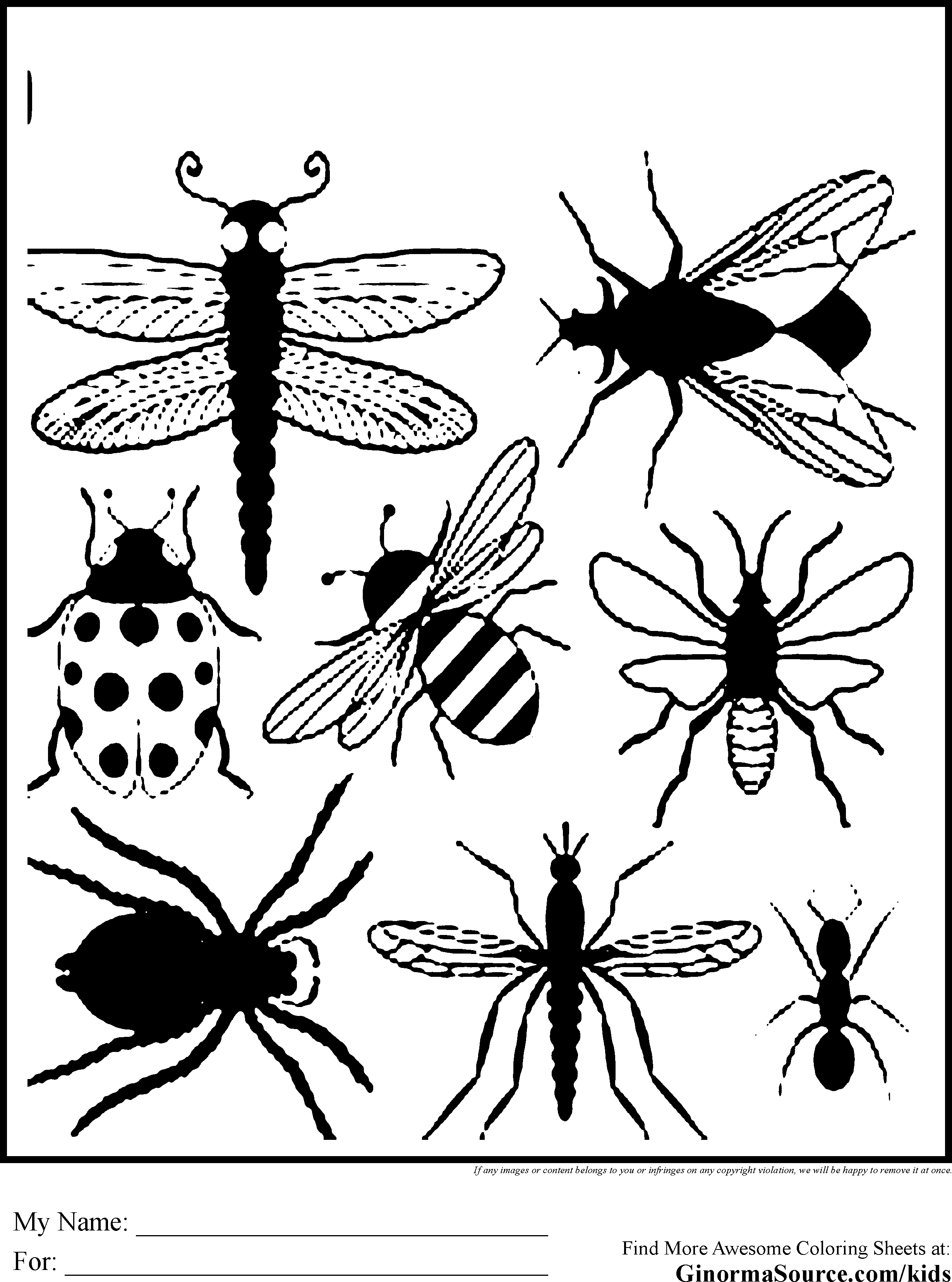 bug pictures to color printable bug coloring pages for kids cool2bkids pictures to color bug