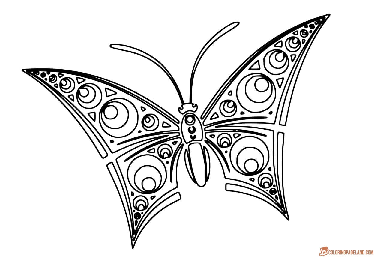 butterfly coloring template 10 butterfly coloring pages free premium templates butterfly template coloring
