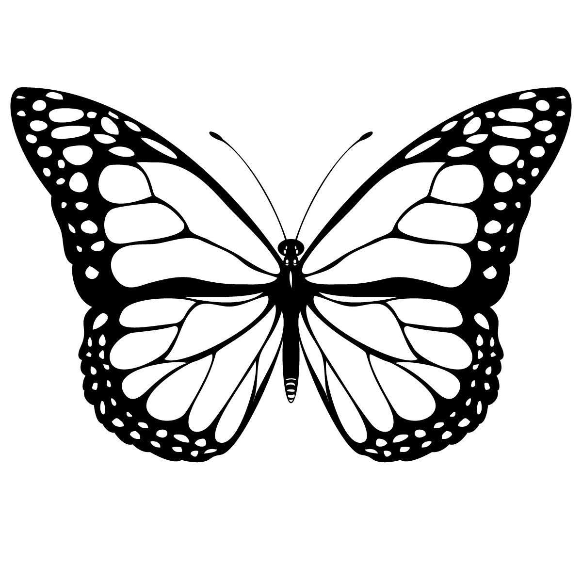 butterfly coloring template 10 butterfly coloring pages free premium templates coloring template butterfly