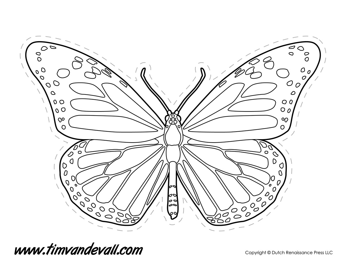 butterfly coloring template butterfly coloring template template butterfly coloring
