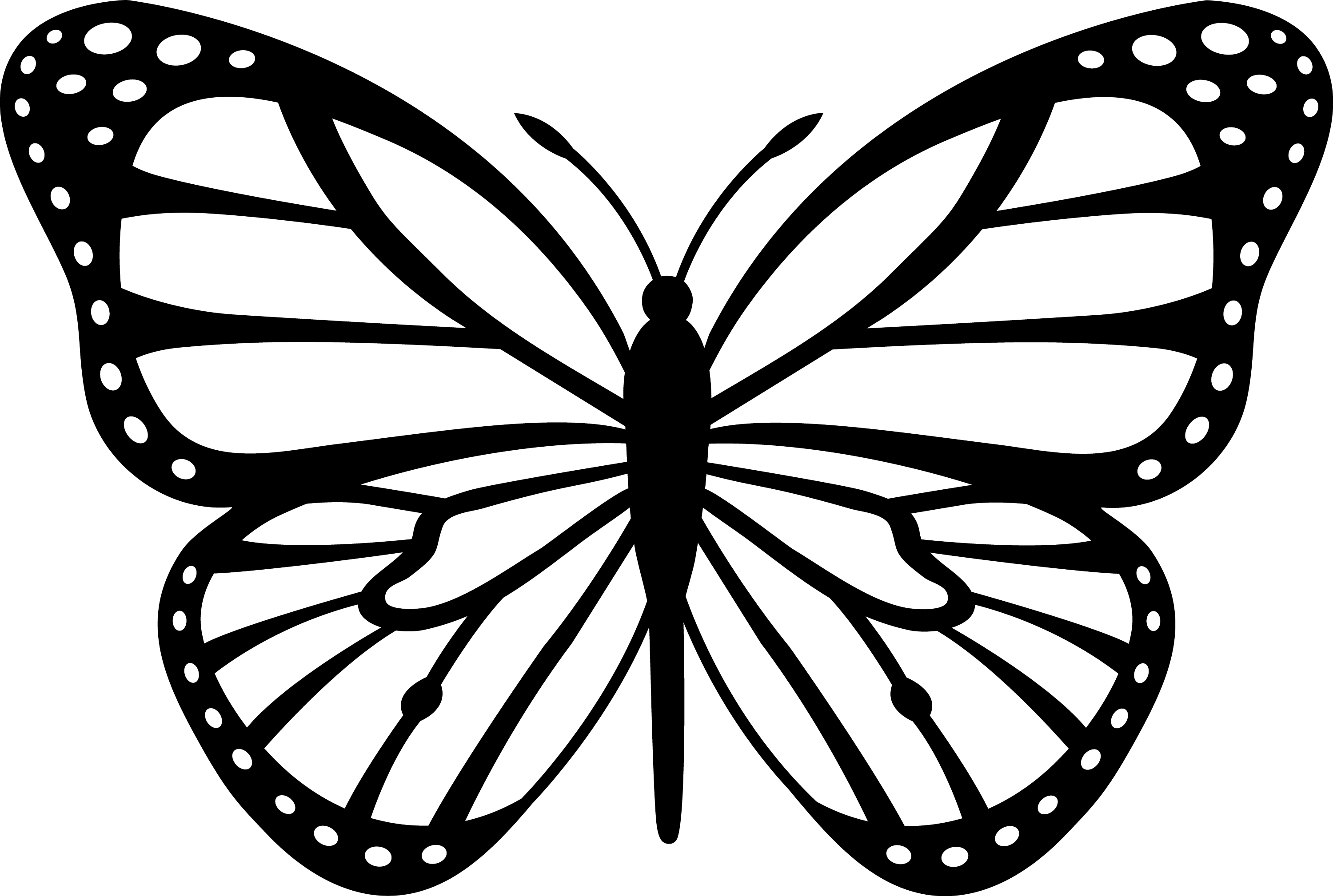 butterfly coloring template free butterfly stencil monarch butterfly outline and template butterfly coloring