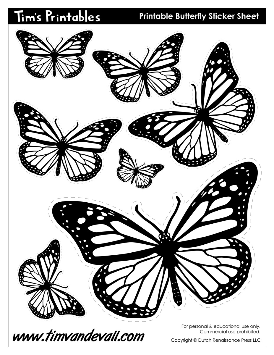 butterfly coloring template free butterfly svg files free svg files more butterfly template coloring