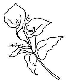 calla lily outline calla lily drawing outline at getdrawings free download lily outline calla