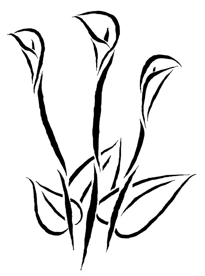 calla lily outline calla lily drawing outline at getdrawings free download outline lily calla