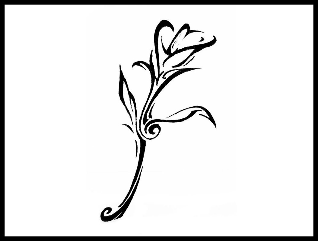 calla lily outline calla lily drawing outline at paintingvalleycom explore calla outline lily