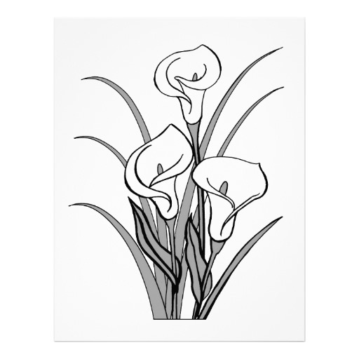 calla lily outline calla lily outline outline calla lily