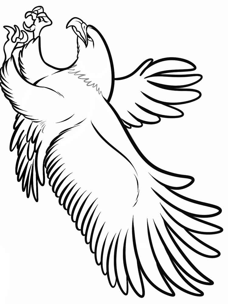 cartoon eagle coloring pages bald eagle drawing at getdrawings free download coloring eagle cartoon pages
