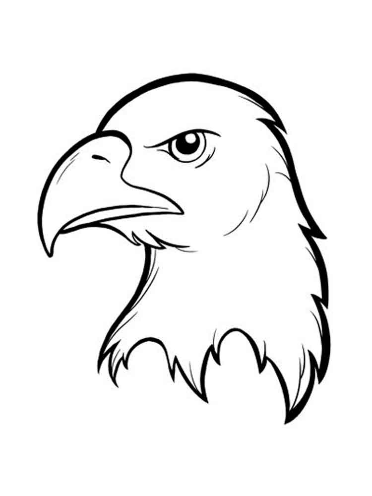 cartoon eagle coloring pages free printable eagle coloring pages for kids eagle coloring pages cartoon