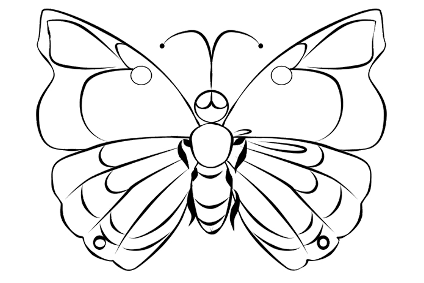 caterpillar to butterfly coloring page printable the very hungry caterpillar butterfly coloring page caterpillar to coloring butterfly