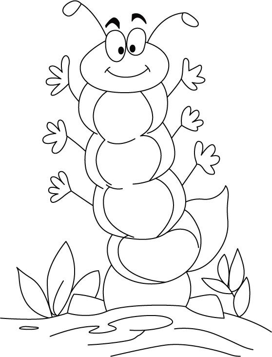 caterpillar to butterfly coloring page the weird pre butterfly stage caterpillar 20 caterpillar to butterfly caterpillar coloring page