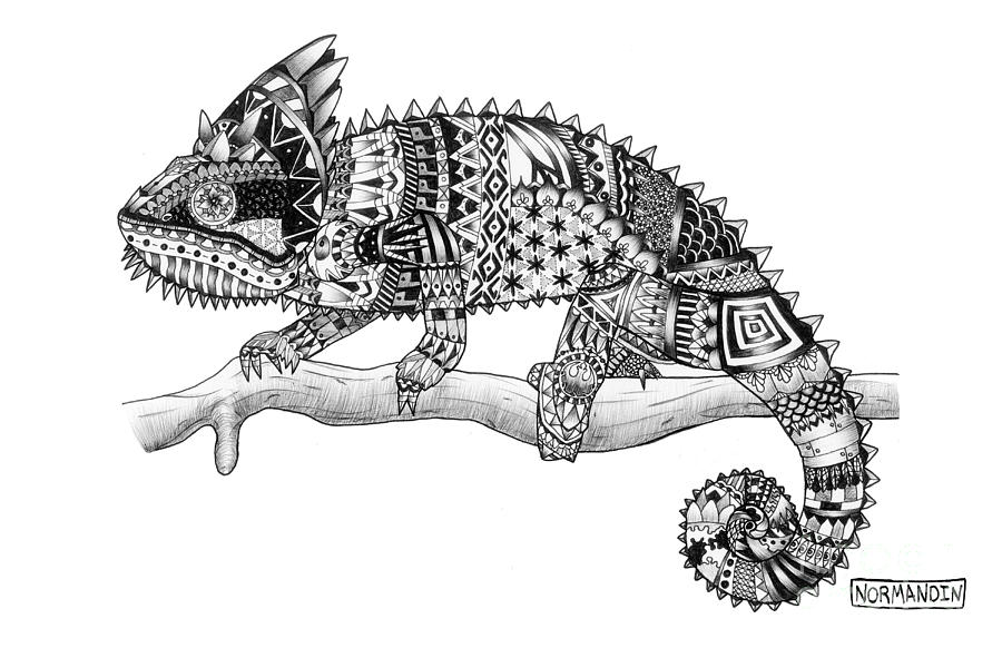 chameleon drawing chameleon trio drawing by tracey gurr ba hons drawing chameleon