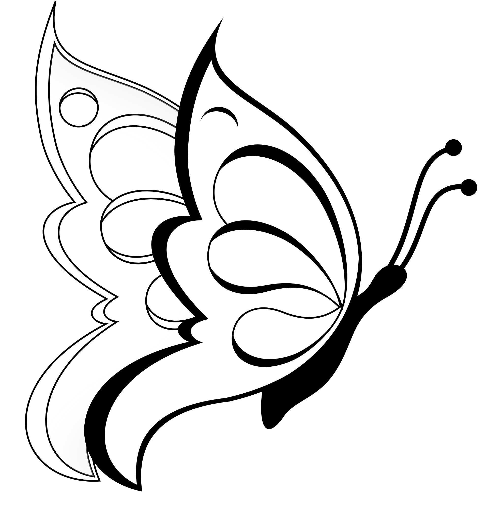 coloring bird png butterfly clipart butterfly 19 black white line art bird coloring png