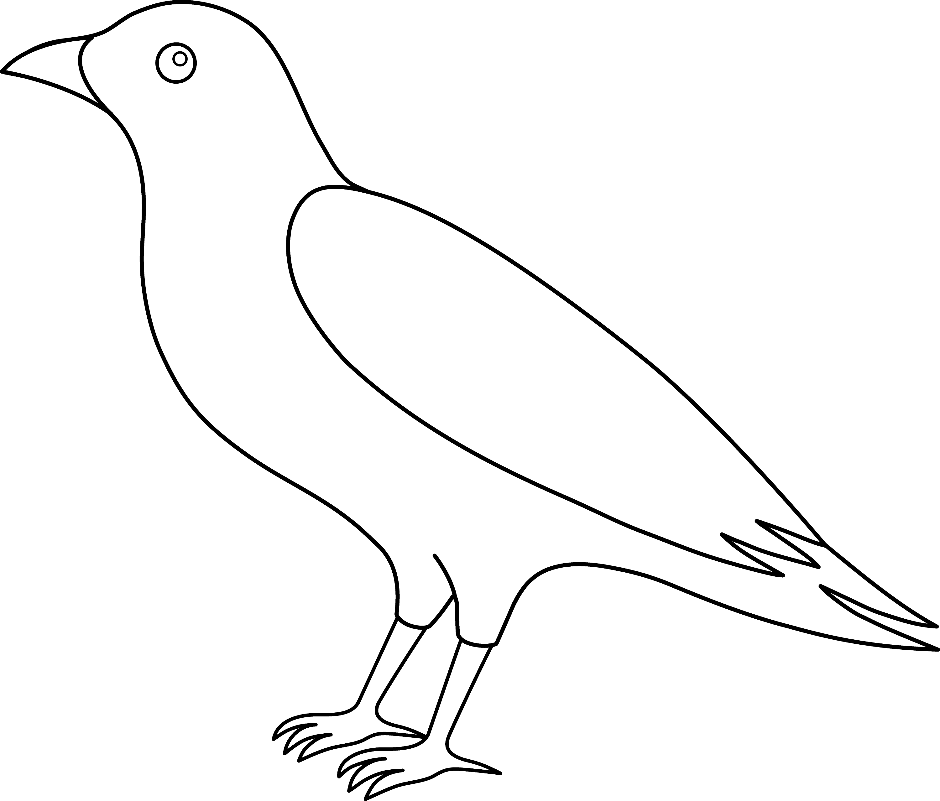 coloring bird png colorable crow line art free clip art bird png coloring