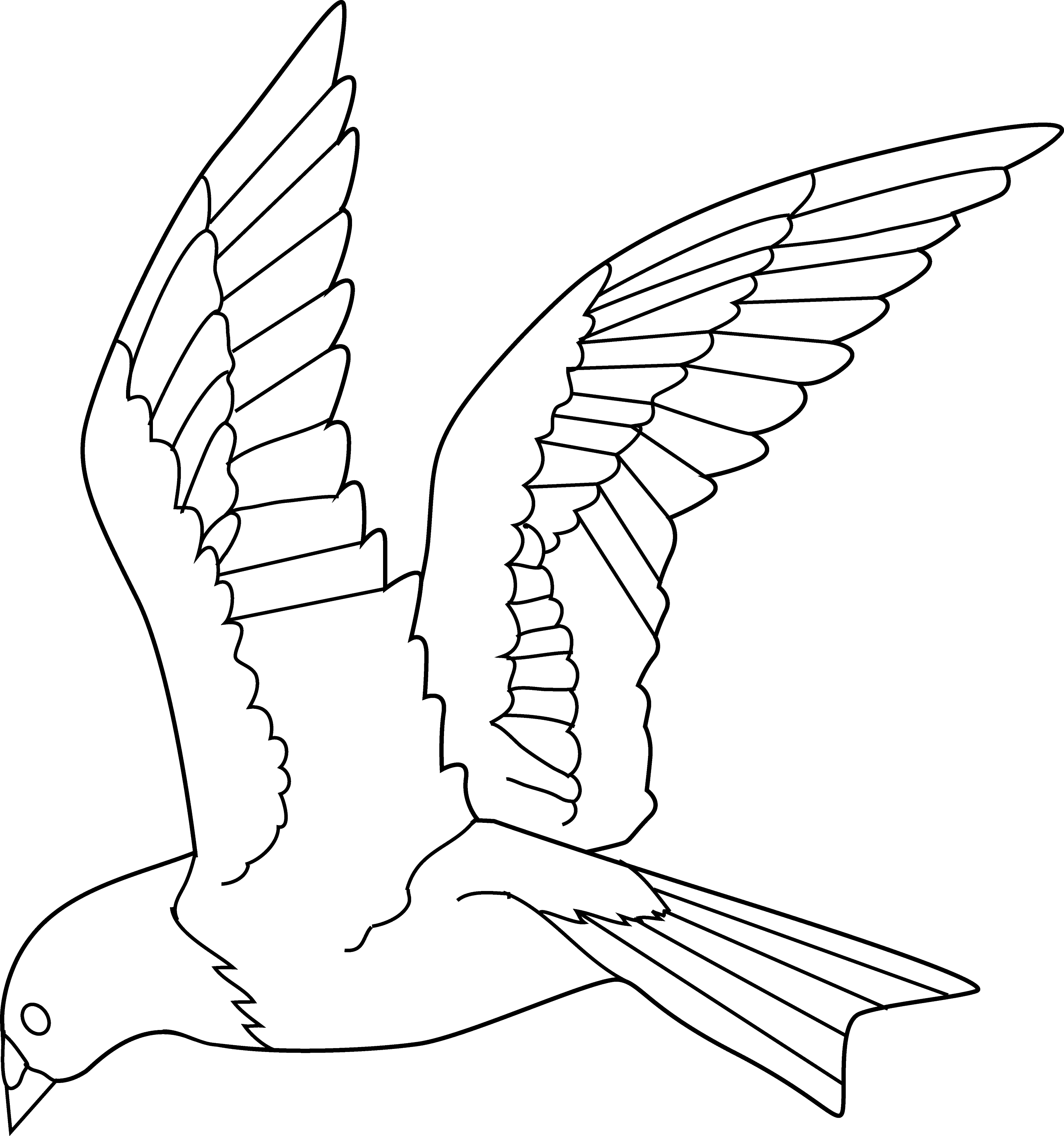 coloring bird png flying bird coloring page free clip art png bird coloring